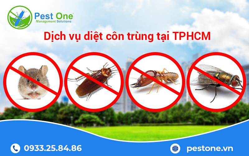 dịch vụ diệt côn trùng tại tphcm