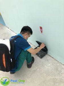 Kiểm tra hộp chuột