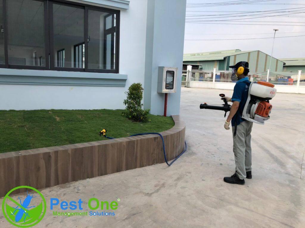 dịch vụ diệt côn trùng tại Long An
