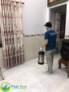 Dịch vụ diệt côn trùng tại nhà 1