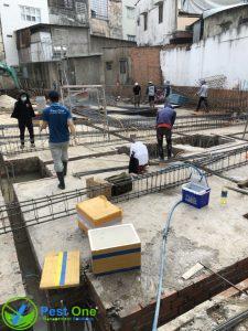 Biện pháp phòng chống mối công trình xây dựng