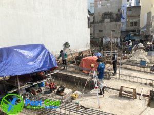 Phòng chống mối công trình xây dựng